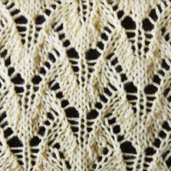 Winged Lace Stitch - Purl Avenue